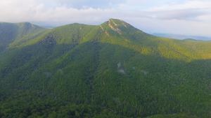 hawksbill-mountain