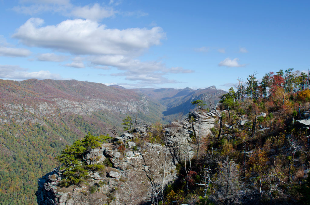 Linville Gorge Looking North